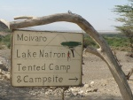 Moivaro Lake Natron Tented Camp & Campsite