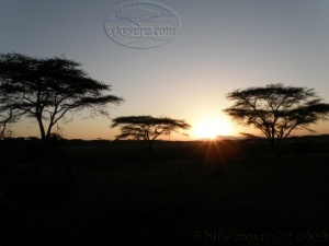 Ndutu sunrise